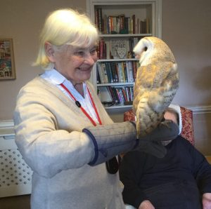 barn owl 1 300x298 - Care Homes Dorset & Residential Care Wiltshire