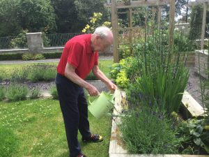 gardening3 300x225 - Care Homes Dorset & Residential Care Wiltshire