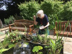 mary 1 251x188 - Care Homes Dorset & Residential Care Wiltshire