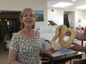 snake1 300x225 - Care Homes Dorset & Residential Care Wiltshire