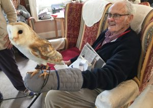 barn owl 13 300x211 - Care Homes Dorset & Residential Care Wiltshire